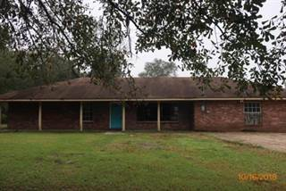 Single Family for sale in 9239 MS-42, Petal, MS, 39465