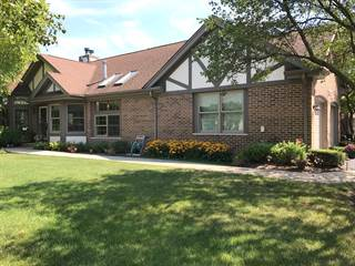 Townhouse for sale in 14517 Morningside Road, Orland Park, IL, 60462