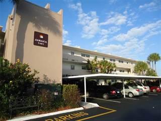 Bay Island Condos South Pasadena Fl For Rent