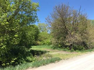 Residential Property for sale in 00 Wells Rd, Greater Lambertville, MI, 49270