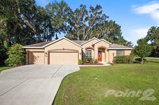 Residential Property for sale in 10102 SW 77th Terrace, Ocala, FL, 34476