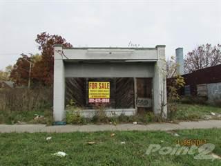 Comm/Ind for sale in 10510 whittier st, Detroit, MI, 48224