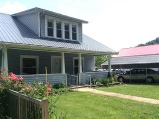 Single Family for sale in 153 River Street, Grantsville, WV, 26147