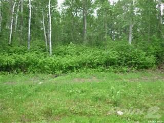 Land for sale in 9-10 Smits AVENUE, RM of Nipawin No 487, Saskatchewan