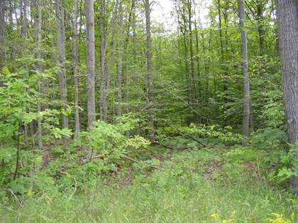 Lots And Land for sale in M-72 8.57 Acres, Fairview, MI, 48621