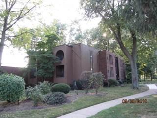 Condo for sale in 33803 Electric Blvd F3, Avon Lake, OH, 44012