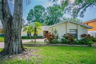 Single Family for sale in 3928 ORCHARD HILL CIRCLE, Palm Harbor, FL, 34684