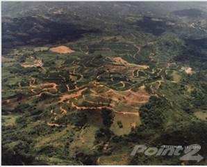 Farm And Agriculture for sale in Bo. Jauca, Jayuya PR, Jayuya, PR, 00664