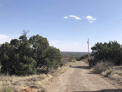 Farm And Agriculture for sale in 1250 Blue Hole Road, Santa Rosa, NM, 88435