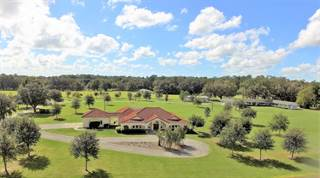 Farm And Agriculture for sale in 500 NE 95TH Street, Ocala, FL, 34479
