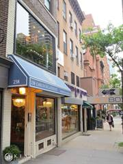 Townhouse for rent in 238 EAST 60TH STREET RETAIL, Manhattan, NY, 10022