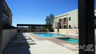 Condo for rent in 500 Lake Havasu Ave., Lake Havasu City, AZ, 86403