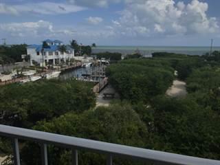 Condo for sale in 500 Burton Drive 5308, Key Largo, FL, 33070