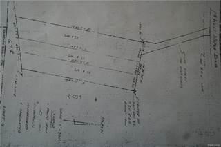 Land for sale in 3015 W MAPLE Road, Wixom, MI, 48393