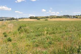 Farm And Agriculture for sale in Lot 7 Springfield Road,, Coldstream, British Columbia, V1B3E5