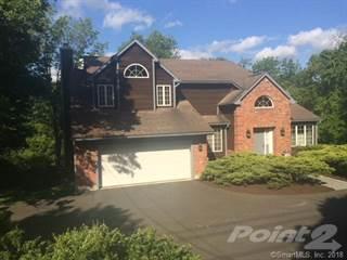 House for sale in 135 Clapboard Ridge Road, Danbury, CT, 06811
