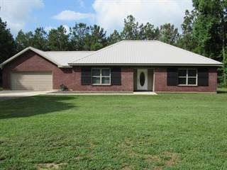 Single Family for sale in 361 Burgetown Rd, Carriere, MS, 39426