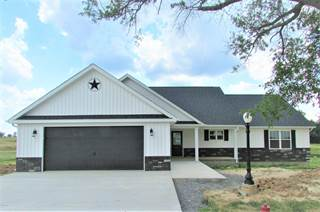 Single Family for sale in 1301 Ridgeview Drive, Marion, IL, 62959
