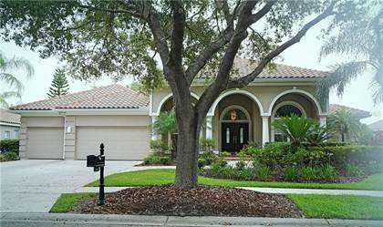 Residential Property for sale in 17807 RIDGEWAY COURT, Tampa, FL, 33647