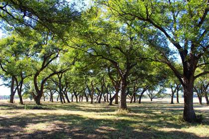 Farm And Agriculture for sale in 292 Swint-Lindley Rd., Desdemona, TX, 76445