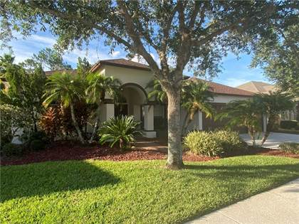 Residential Property for sale in 18438 EASTWYCK DRIVE, Tampa, FL, 33647