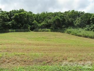 Land for sale in Urbanizacion Hacienda La Sabana., Camuy, PR, 00627