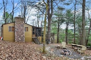 Single Family for sale in 435 Duke Lane, Kunkletown, PA, 18058