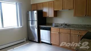 Apartment for rent in Parkside Estates - 2 Bedroom Remodeled, Glendale Heights, IL, 60139