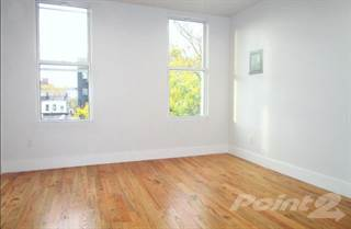 Condo for rent in 388 Harman St #3R - 3R, Brooklyn, NY, 11237