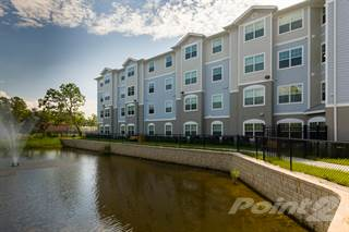 Apartment For Rent In Mary Eaves 1 Bed Bath Corner Jacksonville Fl