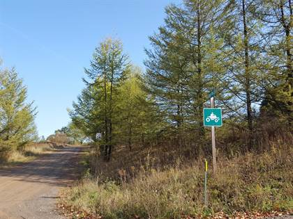 Lots And Land for sale in Lot 41 Spruce Tree Road, Galeton, PA, 16922