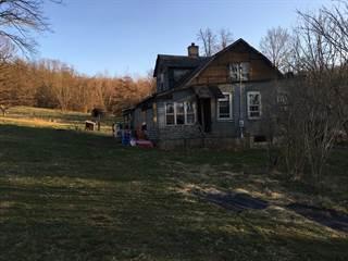Single Family for sale in 4585 Apple Pie, Wellsburg, WV, 26070