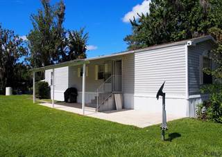 Residential Property for sale in 159 Magnolia Trail, Dunns Creek, FL, 32189