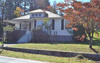 Single Family for sale in 246 TAPPAN STREET, Spruce Pine, NC, 28777