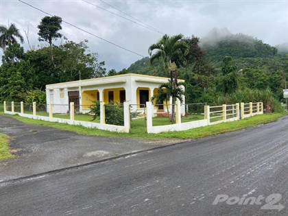 Residential Property for sale in Poblado Caguana, Utuado PR, Caguana, PR, 00641