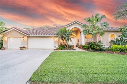 Residential Property for sale in 9111 WOODRIDGE RUN DRIVE, Tampa, FL, 33647