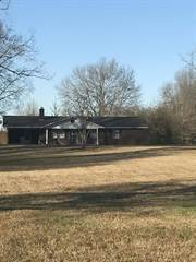 Single Family for sale in 60073 Hwy 23, Smithville, MS, 38870