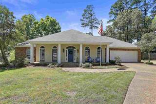 Single Family for sale in 251 WILLOW LN, Brandon, MS, 39047