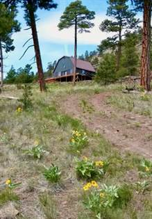 Residential Property for sale in 39 Pryor Creek Lane, Cascade, MT, 59421