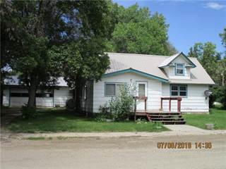 Single Family for sale in 303 Fourth AVENUE W, Ryegate, MT, 59074