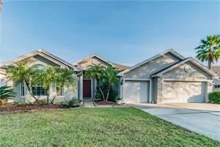 Single Family for sale in 8305 GOLDEN PRAIRIE DRIVE, Tampa, FL, 33647