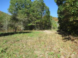 Land for sale in --- OTHER, Alderson, WV, 24910