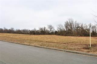 Comm/Ind for sale in 850 East Colter Drive, Republic, MO, 65738