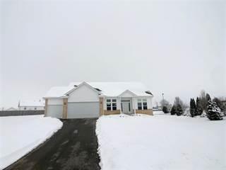 Single Family for sale in 1000 Illinois, Davis Junction, IL, 61020