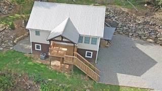 Single Family for sale in 251 Summer Trees Lane, Burnsville, NC, 28714