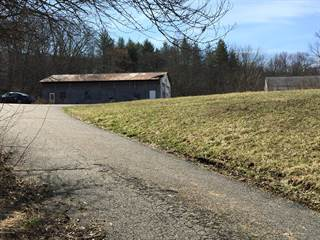 Comm/Ind for sale in 295 SEVEN BRIDGE RD, East Stroudsburg, PA, 18301