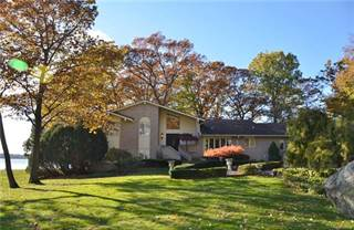 Single Family for sale in 29550 EAST RIVER Road, Grosse Ile, MI, 48138