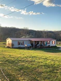Residential Property for sale in 17294 St Rt 7, Greenup, KY, 41144