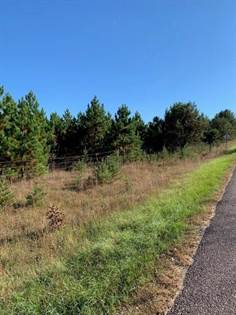 Lots And Land for sale in 0 Jean Road, Black River Falls, WI, 54615