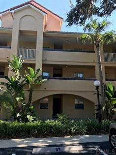 Apartments for Rent in Palm Harbor, FL | Point2